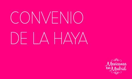 CONVENIO  DE LA HAYA
